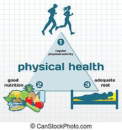 infographic, gezondheid, lichamelijk