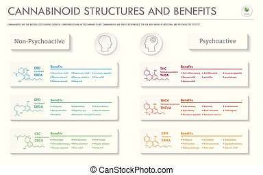 infographic, horizontal, business, cannabinoid, avantages, stuctures