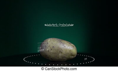 Infographic of Potato with vitamins, microelements minerals....