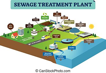 infographic, plante, illustration., vecteur, traitement, propre, water., eaux égout, sale
