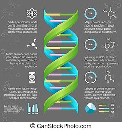 Infographic template with DNA structure for medical and...