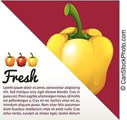 Infographic with fresh capsicum illustration