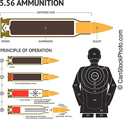 Infographics about the principle of bullet operation. Vector illustration