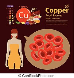"""copper - Infographics """"copper. Food sources."""" Foods with the..."""