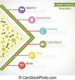 infographics, eps10, ベクトル, 利益, バクテリア