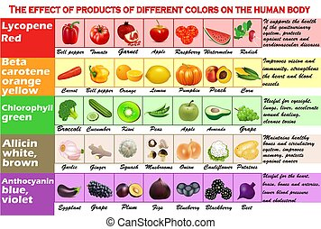 Infographics illustration set. - The effect of products of different colors on the human body.