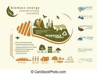 infographics renewable source of biomass energy and...