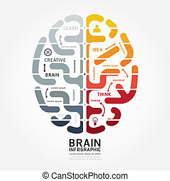 infographics vector brain design diagram line monochrome...