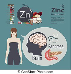 Zinc. - Infographics. Zinc. Food sources and influence on...