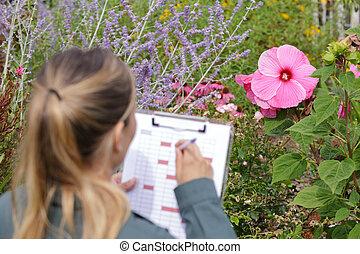 informatie, over, bloem, haar, arbeider, klembord, het putten