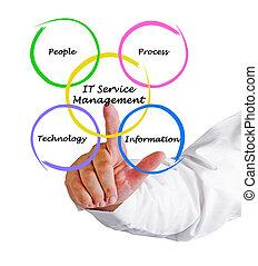 informatietechnologie, management, diensten