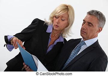 informe, profesionales, discutir negocio