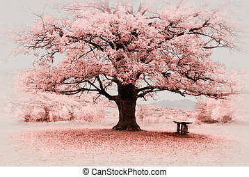 Infrared big tree. Composition of nature.