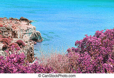 infrared landscape of Lakonia sea Peloponnese Greece - Petrified forest landscape - greek summer destination
