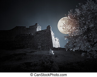 Infrared medieval Castle in a full moon night - Mysterious...