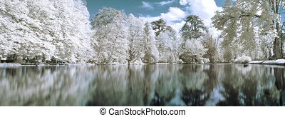 Infrared panoramic landscape with trees reflecting in lake...