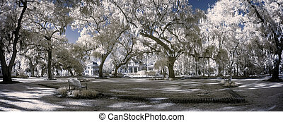 infrared park landscape - surreal infrared landscape with...