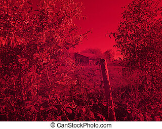 Infrared photo of an old barn