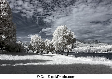 Infrared river bank - Lima river bank in a spring sunny...