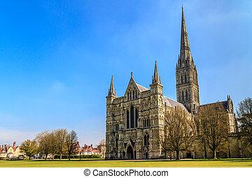 inghilterra, soleggiato, parco, giorno, salisbury, fronte, cattedrale, sud, vista