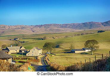 inglés, escena rural, cerca, grayrigg, cumbria.