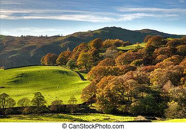 inglés, escena rural, con, otoño, colores