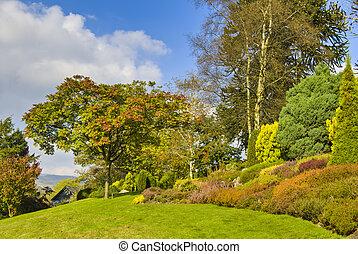 inglés, jardín del país, en, otoño