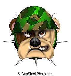inglés, perro del toro, cabeza, con, ejército, casco