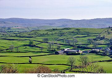 inglés, rural, rodante, campo