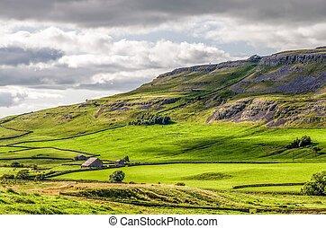 inglaterra, yorkshire, ladera, verde, valles, ingleton