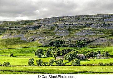 ingleton, campo, inglés, yorkshire, verde, valles