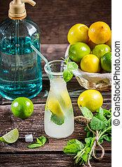 Ingredients for a fresh cold drink lemon