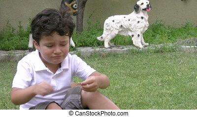 Injured little boy crying