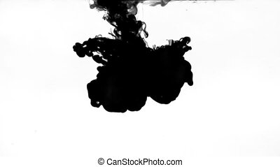ink in water on a white background in slow motion