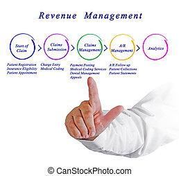 inkomsten, management, proces