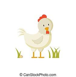 inländisch, vogel, weißes, henne, wappen, abbildung, plakat