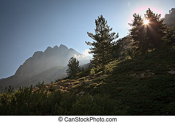 Inland Corsica, splendid Restonica Valley