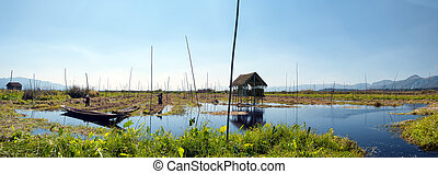 Inle Lake Myanmar, Shan state. Floating gardens of rural Intha