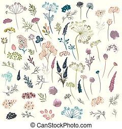 inmenso, colección, de, florals, plantas, flowers., vector,...