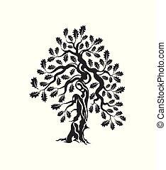 inmenso, silueta, árbol, roble, aislado, fondo., sagrado,...