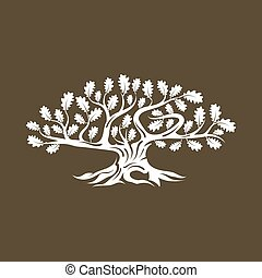 inmenso, silueta, marrón, árbol, roble, aislado, fondo.,...