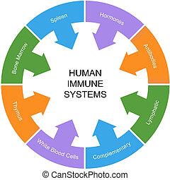inmune, círculo, concepto, palabra, sistema