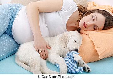 innehållsrik kvinna, med, henne, hund, hemma
