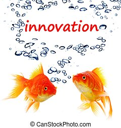 innovation word and goldfish showing business idea or...