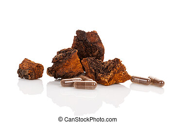 Inonotus obliquus, chaga chunks isolated.
