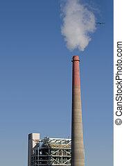 inquinamento, pianta
