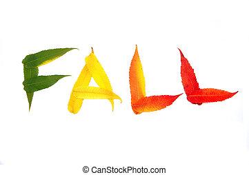 inscriptie, -, kleurrijke, herfst