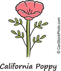 inscription., 隔離された, 咲く, イラスト, blossom., フィールドが上昇した, ケシ色, 共通...