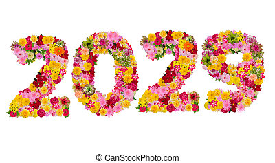 Inscription 2029 from fresh flowers isolated on white background. Happy New Year Concept. With clipping path