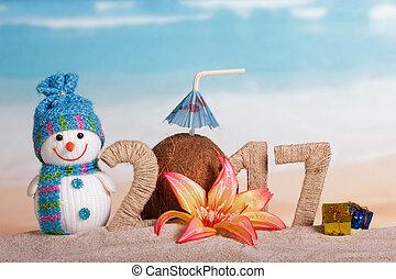 inscription, noix coco, fleur, sable, noël dons, bonhomme de neige, décoré, 2017
